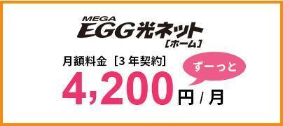 megaegg光4200円